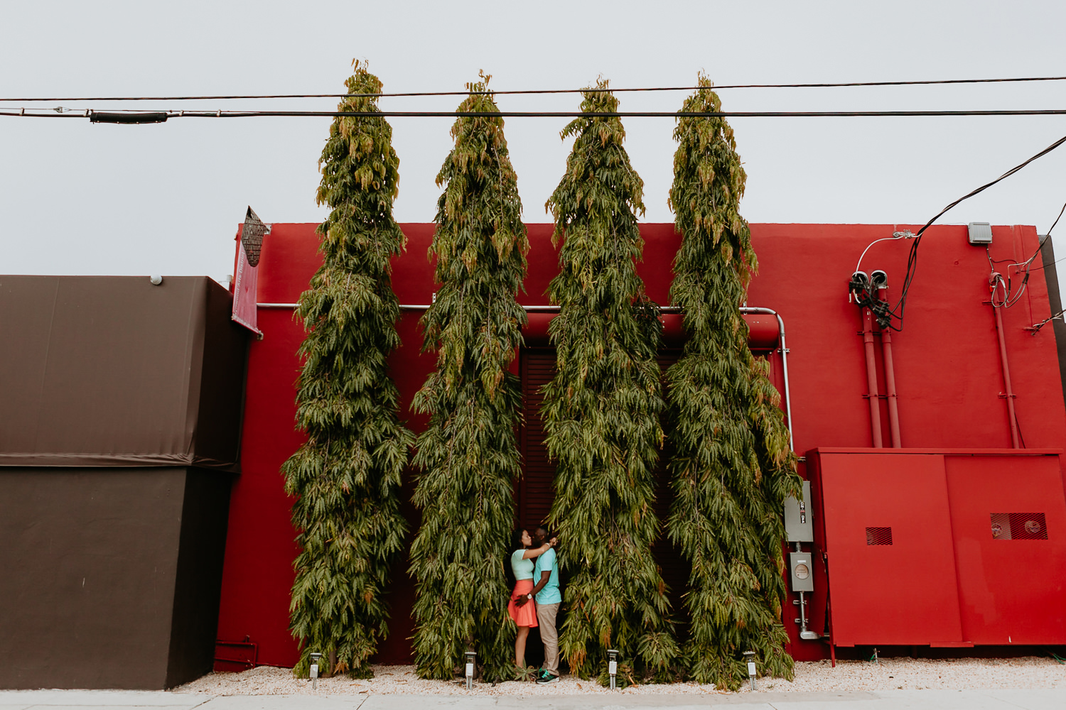 red wall with four tall trees with engaged couple in the middle arms around each other