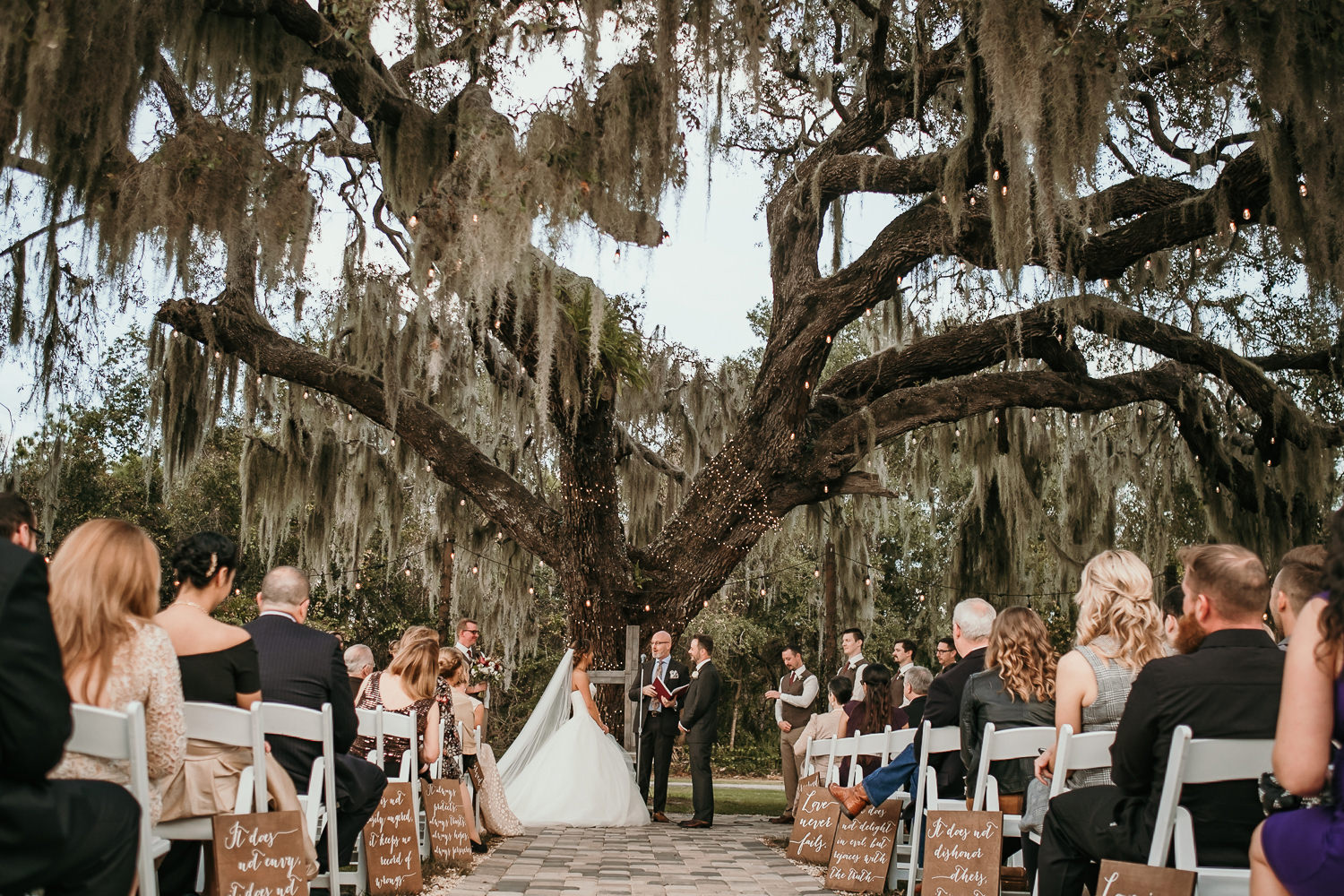 wide shot of ceremony site with a big tree in background